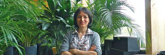 Le périscope, journal économique et info économique sur Mulhouse (Alsace) : Jardin d'intérieur