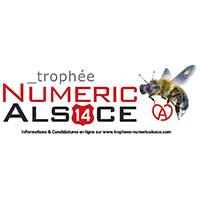 trophees numeric Alsace