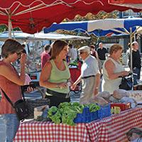 Les marché et amap dans le sundgo