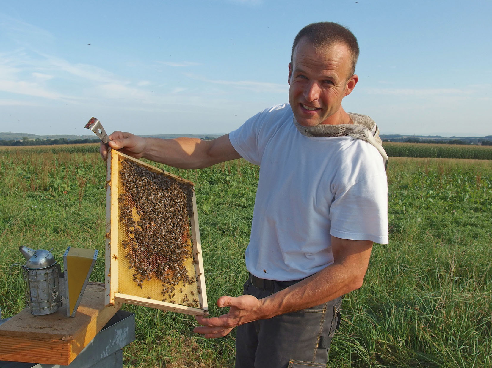 apiculteur alsace