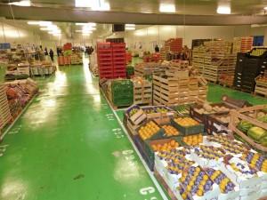 Nouvel entrepôt à Rixheim